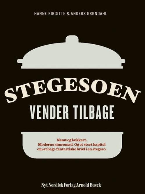 Anders Grøndahl;Hanne Birgitte Grøndahl, Stegesoen vender tilbage