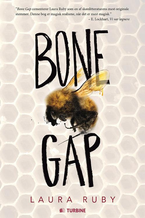 Laura Ruby, Bone Gap