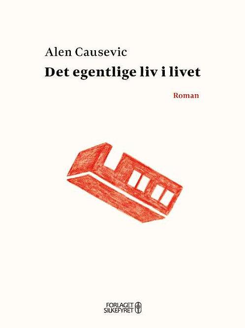 Alen Causevic, Det egentlige liv i livet