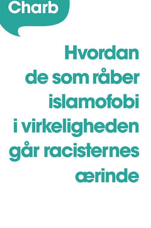 Stéphane Charbonnier (Charb), Hvordan de som råber islamofobi i virkeligheden gå