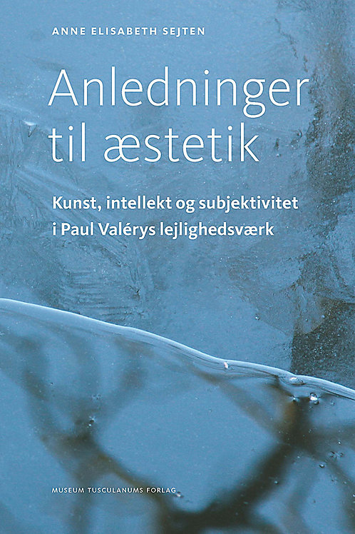 Anne Elisabeth Sejten, Anledninger til æstetik