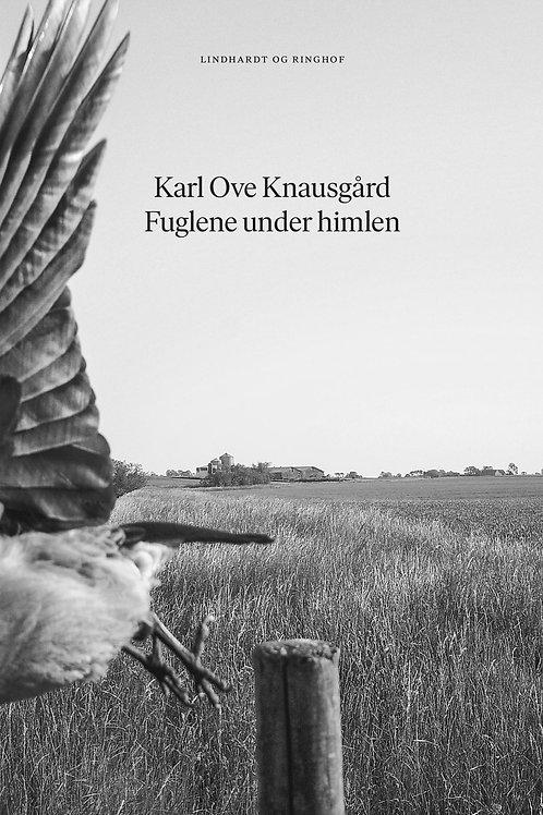 Karl Ove Knausgård, Fuglene under himlen