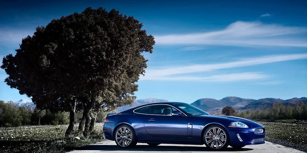 Supercar Fest | Jaguar XK Car Club