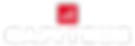 Capiteus_logo_stacked_rev.png