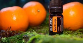 En healer olier - Wild Orange