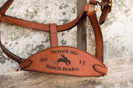 Award Horse Halter