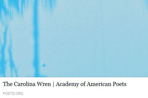 Poets.org.JPG