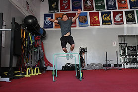 Athlete - Hurdle 2.jpg
