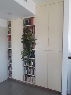 ארון קיר משולב ספרייה צבוע שלייפלק