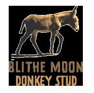 Blithe Moon Donkey Stud.png