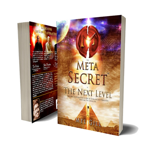 The Meta Secret Soft Cover