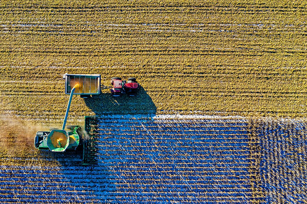 aerial-shot-aerial-view-agriculture-1595