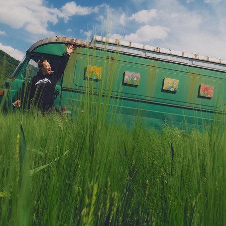 Výstava na lúke/Exhibition on the meadow 💫