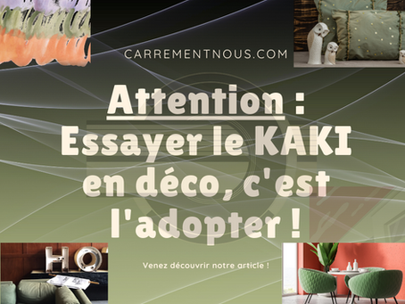 ATTENTION : essayer le KAKI en déco, c'est l'adopter !