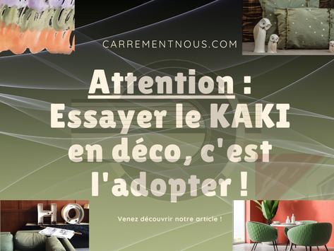 ATTENTION : essayer le KAKI en déco, c'est l'adopter !
