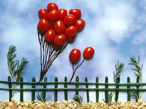 Comment faire rougir (mûrir) ses tomates vertes en automne? Explications et astuces.