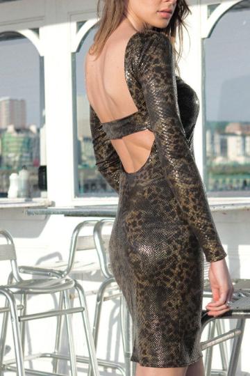 Backless Animal Print Bodycon Print Dress