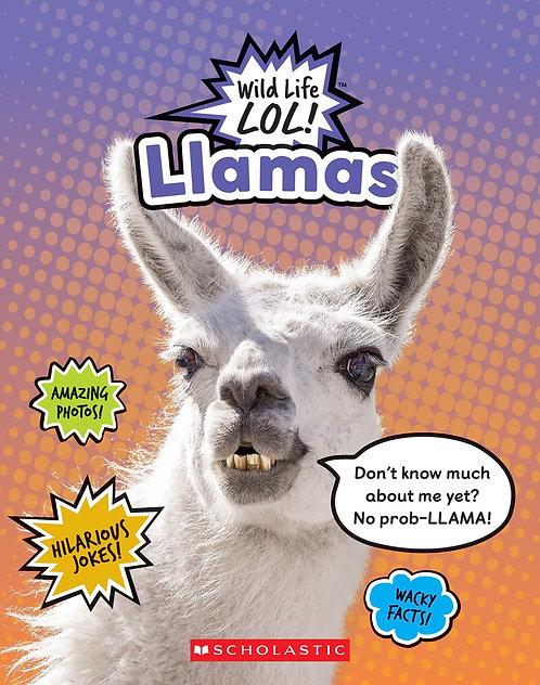 Llamas (Wild LIfe LOL!)
