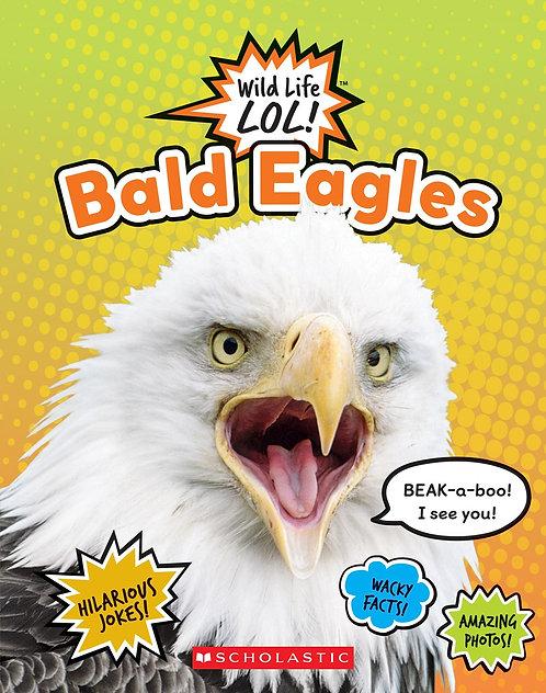 Bald Eagles  (Wild Life LOL!)