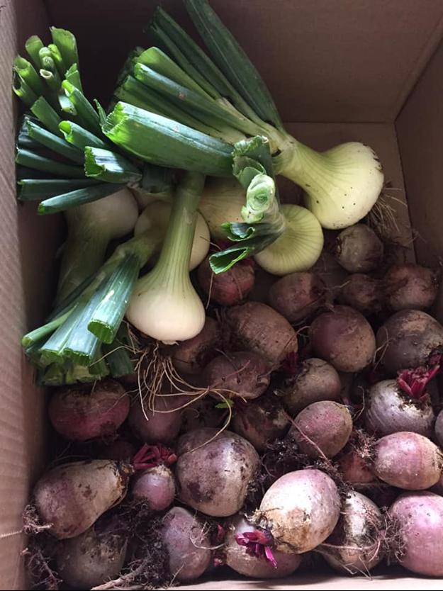 Vegetables in a cardboard box