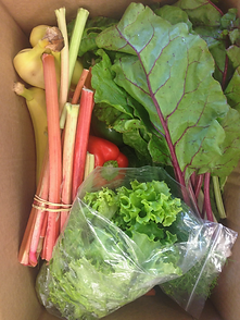 Box filled with vegetables