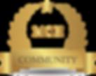 MCH-community.png