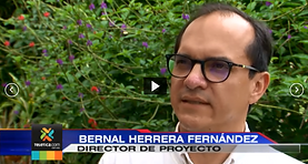 Bernal.PNG