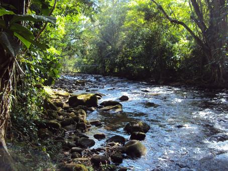 FUNDECOR propone a Costa Rica como catalizador de acciones locales  en manejo de recursos naturales