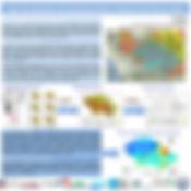 poster RIOS monitoreo brasil.JPG