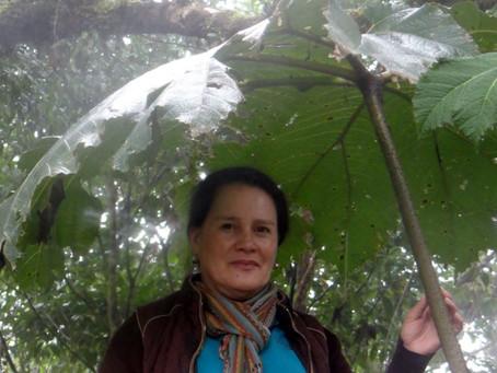 Doña Lily, sembrando árboles y esperanza desde 1998