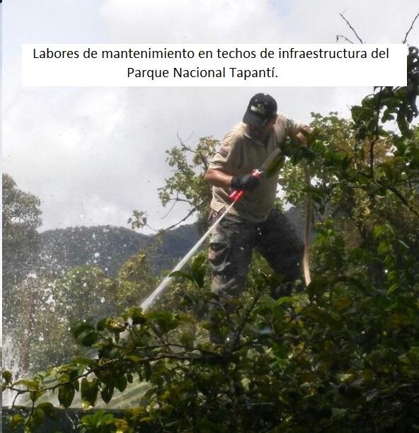 Mauricio_Hernández_4