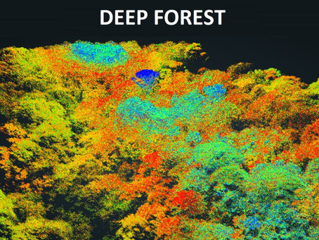 Deep Forest: Drones and Advanced Technology Improve the Study of Tropical Forests
