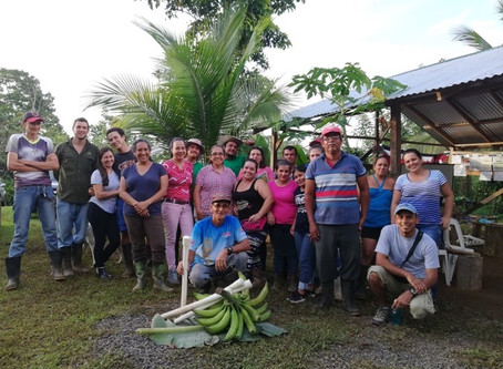 ¡Juntos construimos un #SarapiquíResiliente! Familias productoras de Sarapiquí se capacitan en abono