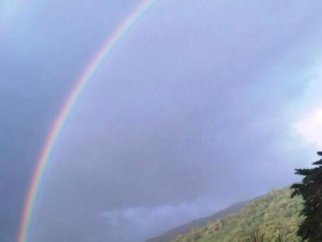 Hermoso arcoiris desde Vieja Cinchona