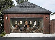 Cochrane Floors Barn Horses Mural