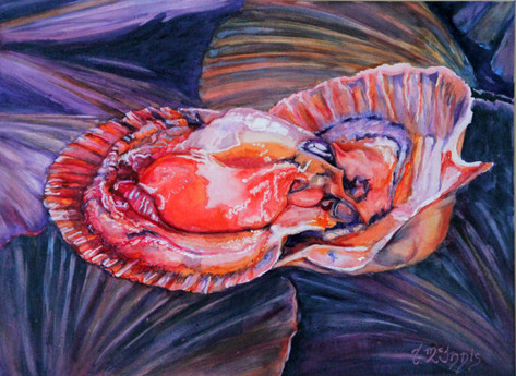 """""""Coquilles St-Jacjues"""", 18x24"""" Watercolor on paper."""