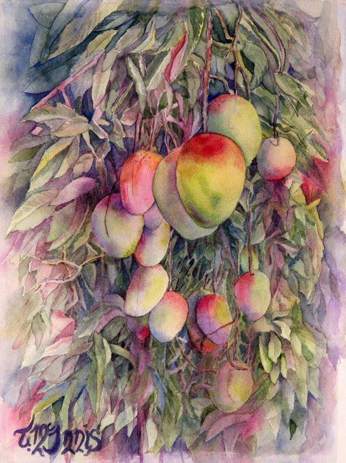 """""""Mango Madness"""" , 14x18"""" Watercolor on paper."""