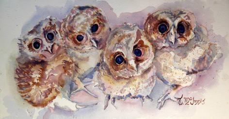 """""""Owlette Quartette"""", 26x15.5"""" Watercolor on paper."""