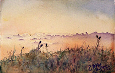 """""""Thistle Hill"""" 15X12"""" Watercolor on paper."""