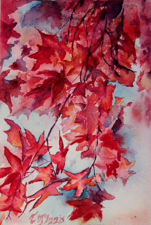 """""""Red Maple"""", 12x16"""" Watercolor on paper."""