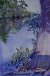 """""""Live Oak Landing Shadow"""" , 16x20"""" Watercolor on paper."""