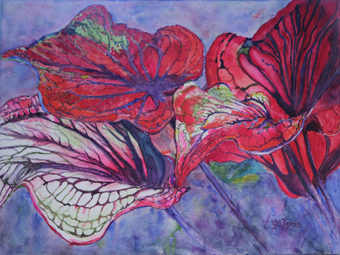 """""""Red Caladiums"""", 18x24"""" watercolor on canvas."""
