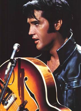 Elvis Matters