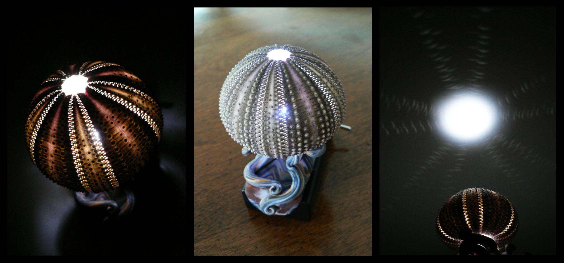 urchin_lamp_by_blackmagdalena-d46ej6x