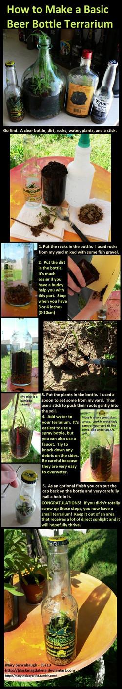 beer_bottle_terrarium_tutorial_by_blackmagdalena-d652uoe
