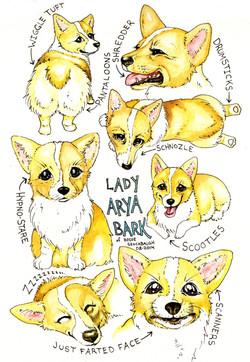 lady_arya_bark_by_blackmagdalena-d7uudbu