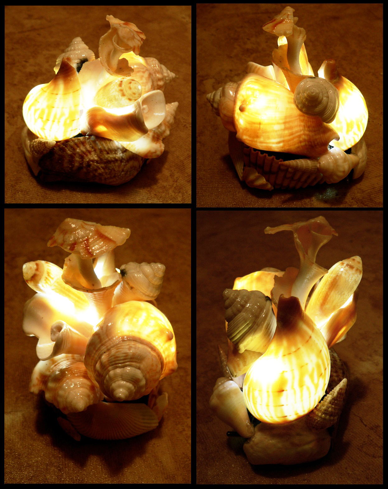florida_shell_lamp_by_blackmagdalena-d4b9u1k