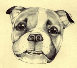 gary_the_bulldog_by_blackmagdalena-d4m1egw