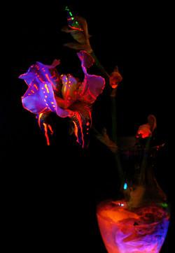 alien_bouquet_by_blackmagdalena-d7hrbd5.