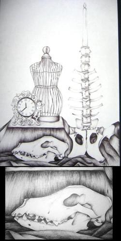 my_ball_point_skulls_by_blackmagdalena